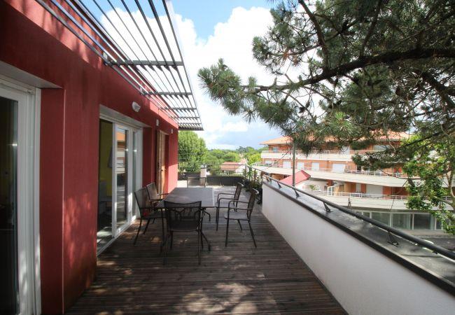 Appartement grande terrasse